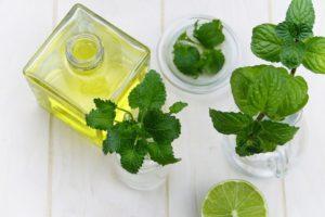 l'huile essentielle de menthe poivrée