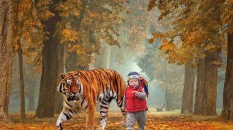 Peut-on appliquer le baume du tigre rouge sur un enfant ou un bébé ?