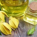 huile essentielle ylang ylang