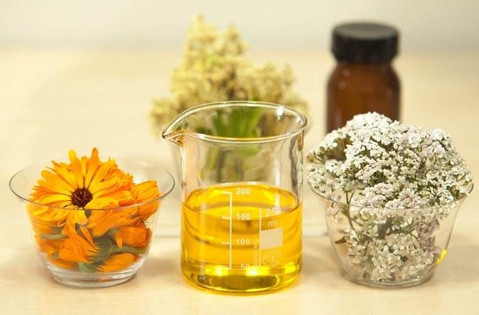 l'huile essentielle de racine d'angélique